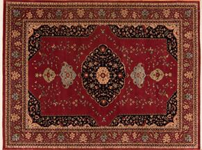 38987<div>9 x 12 8-10 x 12 Rust hand spun wool pile Hand-knotted in India rugs</div>